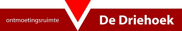 Demian_Geerlings_deDriehoekLOGOdec2012